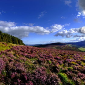 irlande miniature paysage