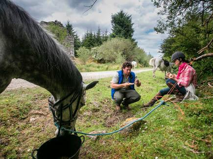 séjour linguistique irlande adulte équitation